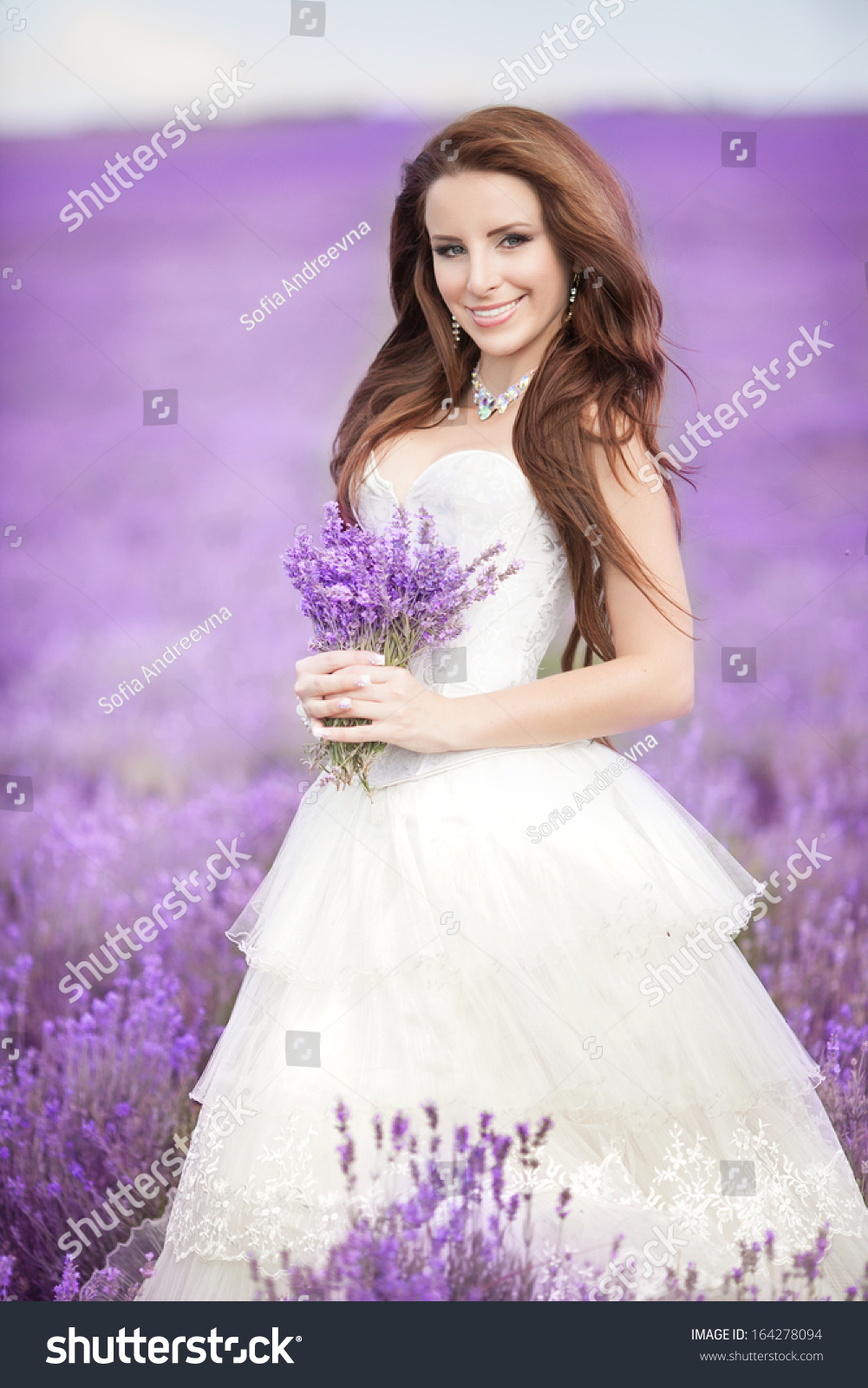 Beautiful Bride Wedding Day Lavender Field Stock Photo & Image ...
