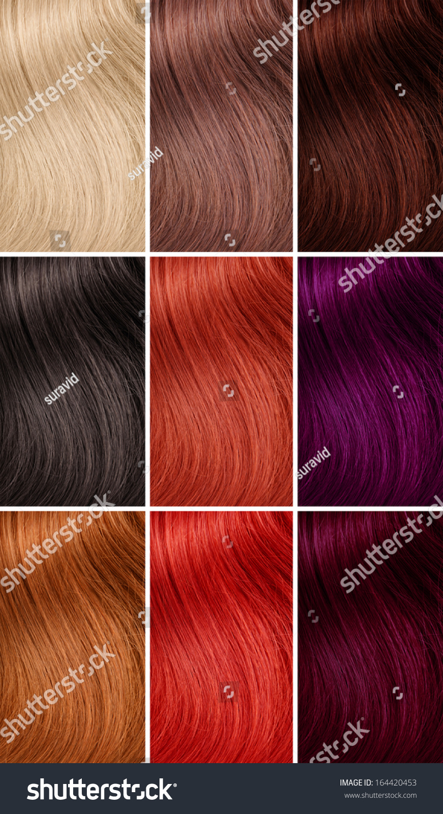 Example Different Hair Colors Stock Photo Edit Now 164420453