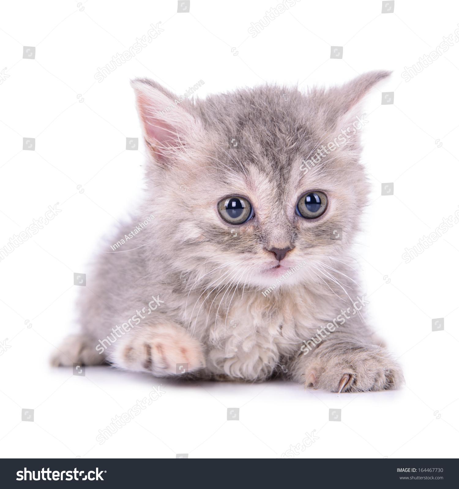 sisal cat scratching mat