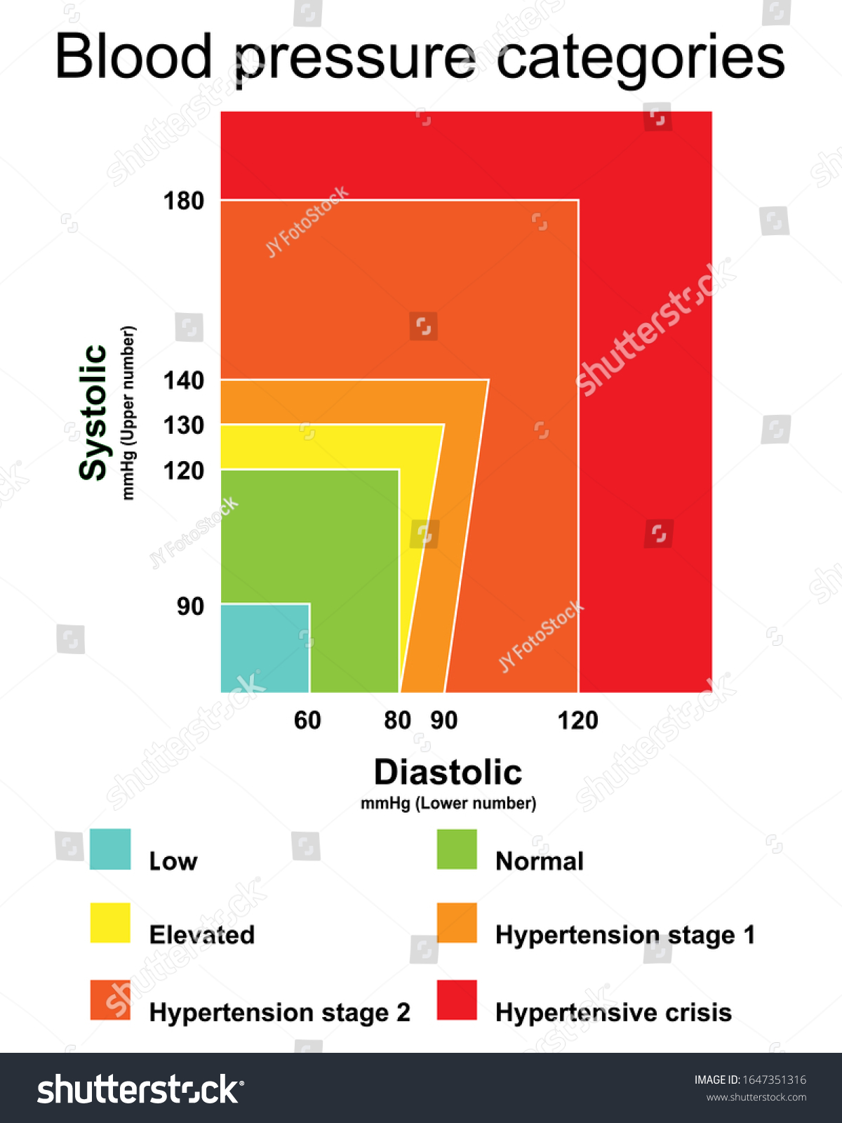 Blood Pressure Categories Infographic Chart Isolated Stock Vector ...