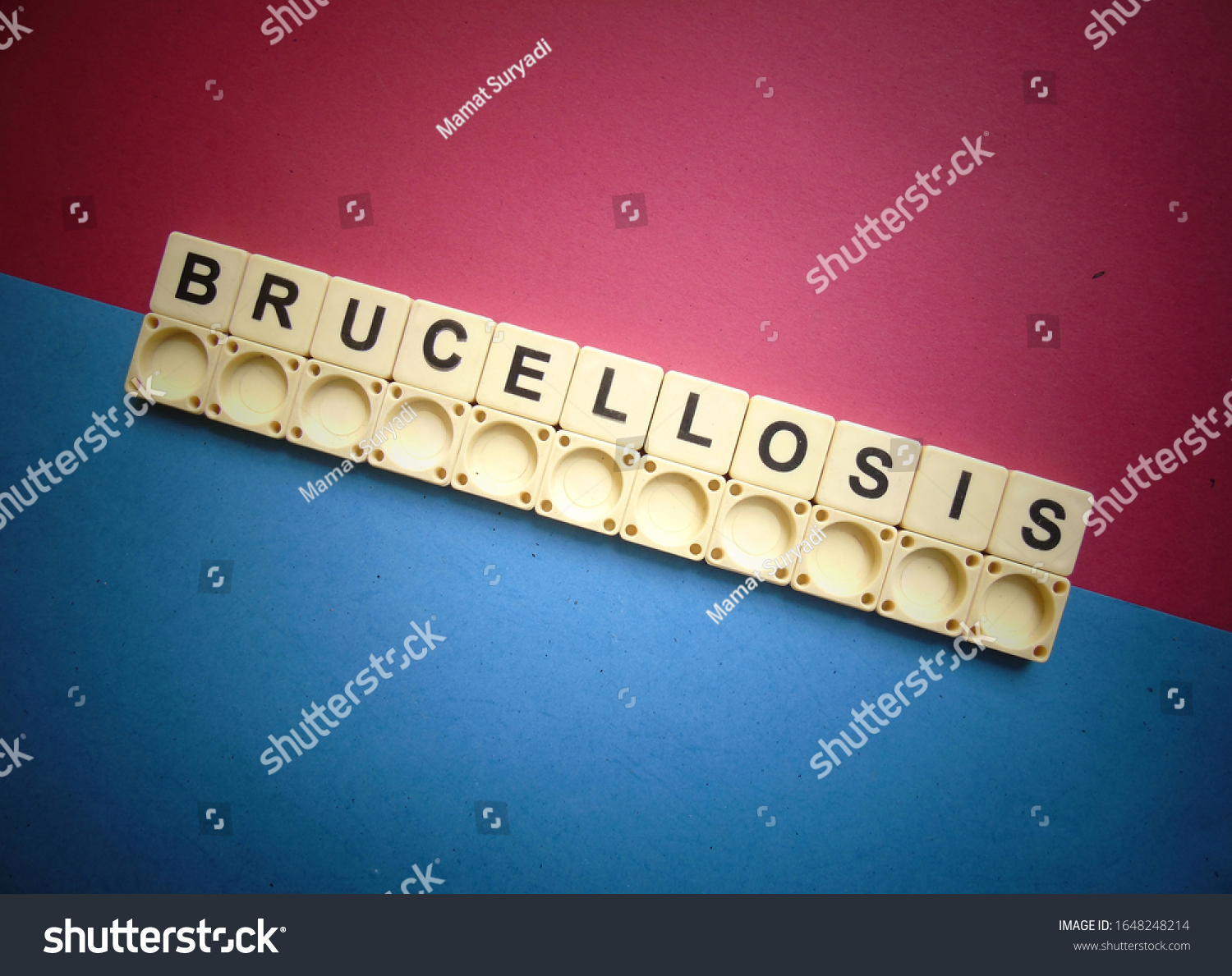 Brucellosis, word cube with background. #1648248214