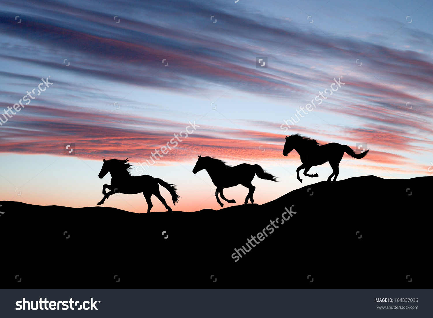 galloping