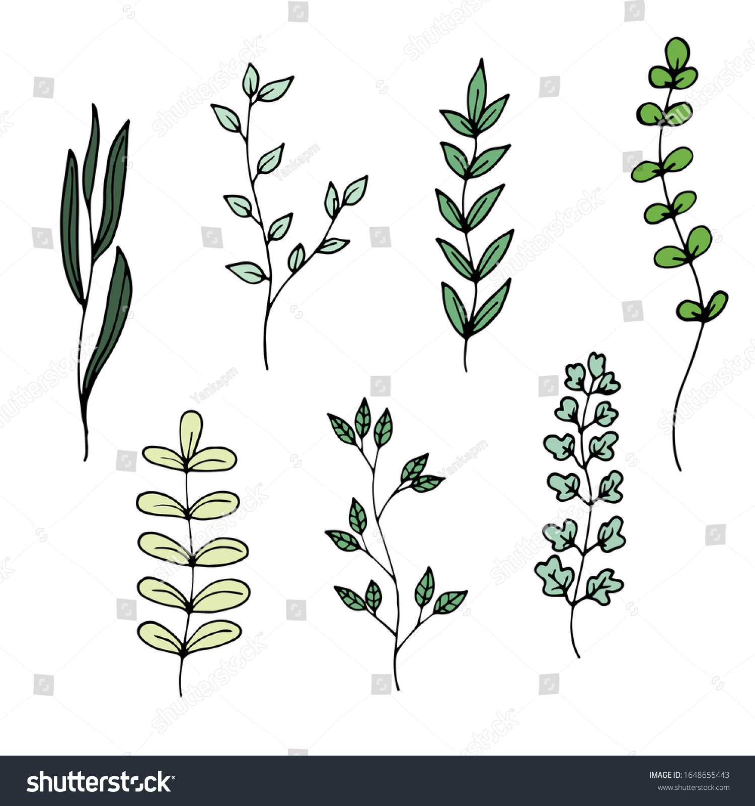 Set Simple Green Plants Doodle Style Stock Vector Royalty Free 1648655443