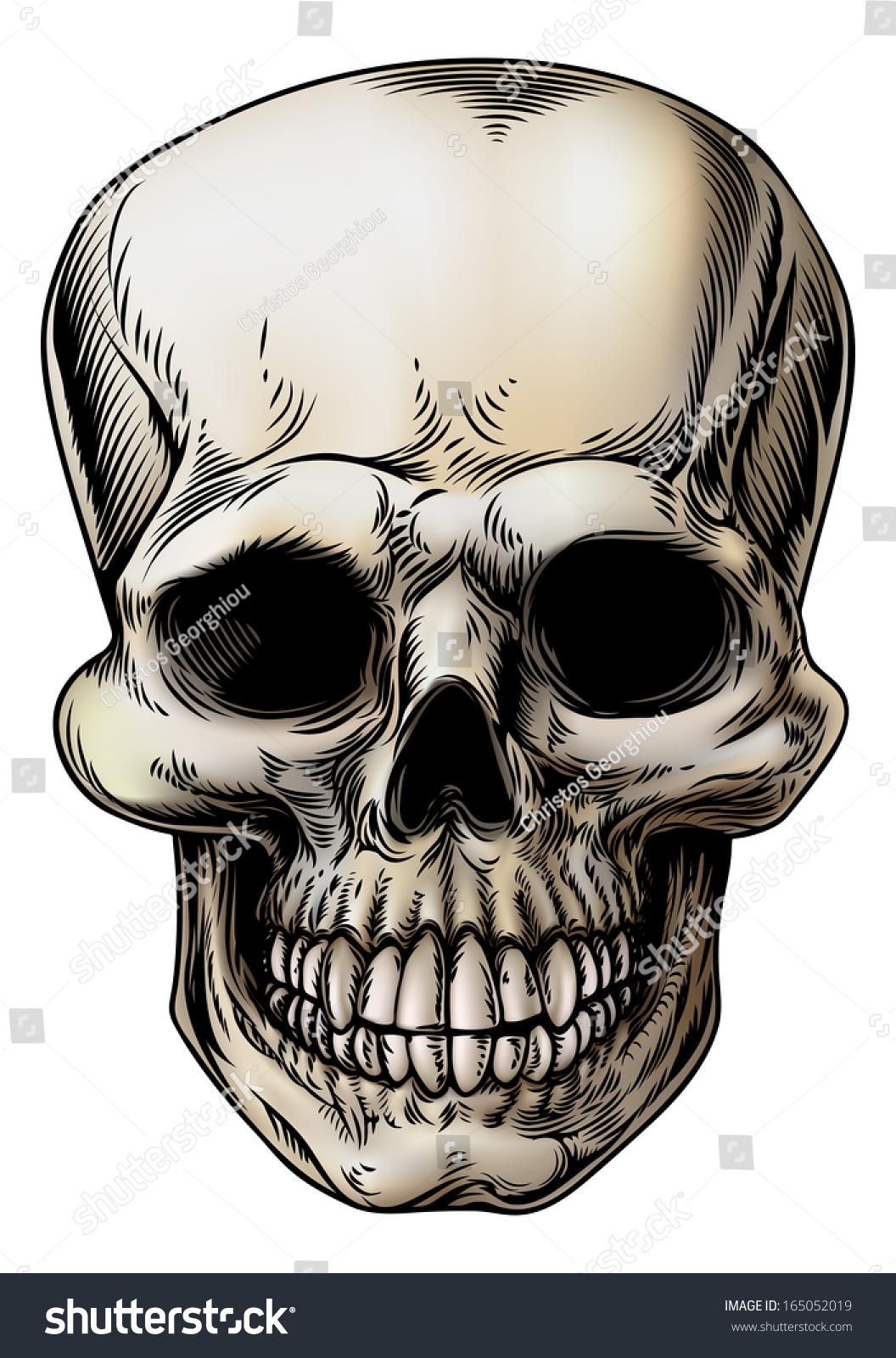 Human Skull Grim Reaper Skeleton Head Stock Vector Royalty Free
