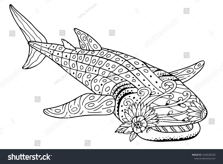 Antistress Whale Shark Coloring Book Beautiful Stock Vector ...