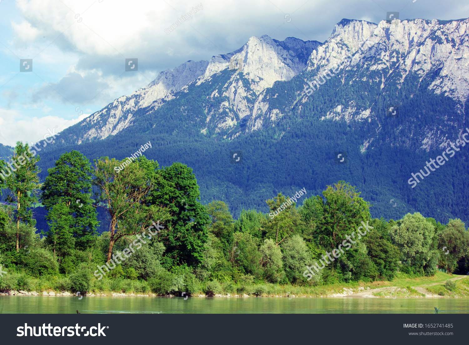 Trees on a river mountain background