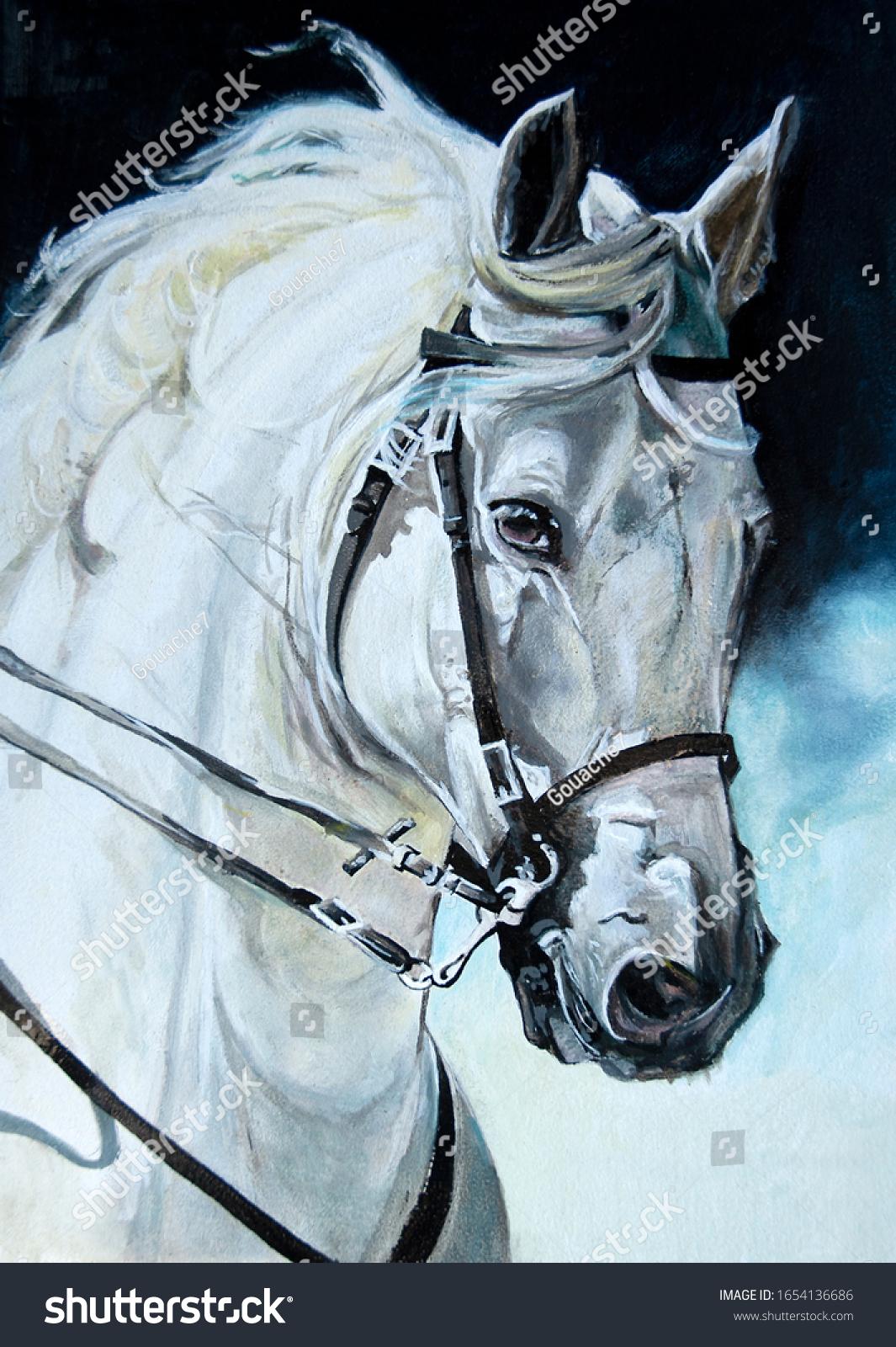 Head Profile White Horse Oil Painting Stock Illustration 1654136686