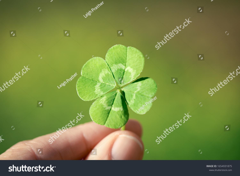 Holding a lucky four leaf clover. #1654931875