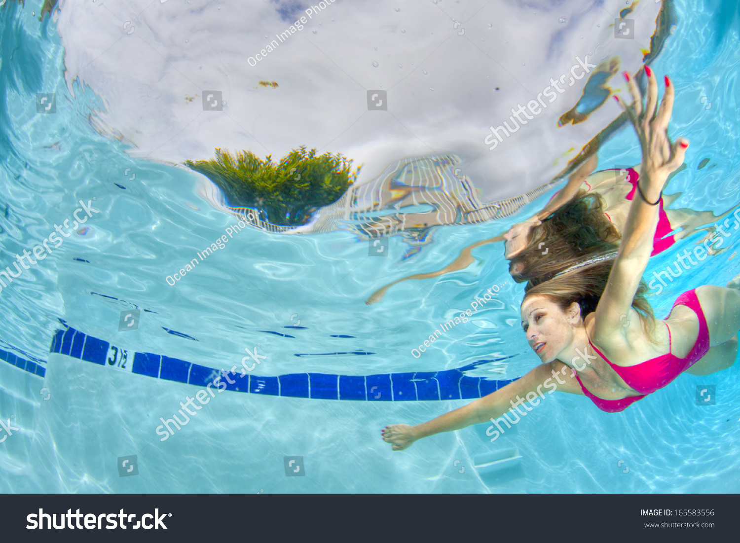 Swim woman hot young sexy woman swimming underwater stock for Swimstyle pool