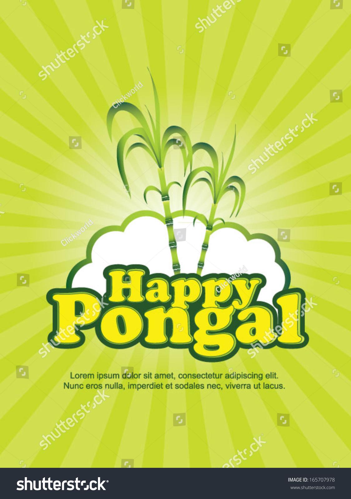 essay pongal festival india