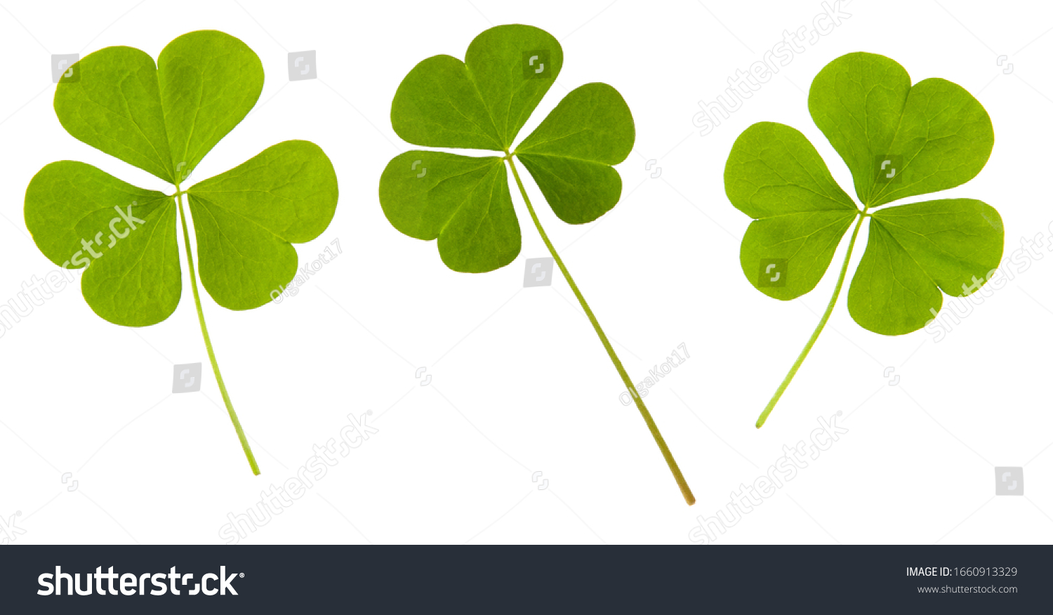 Clover green leaf set isolated on white background #1660913329