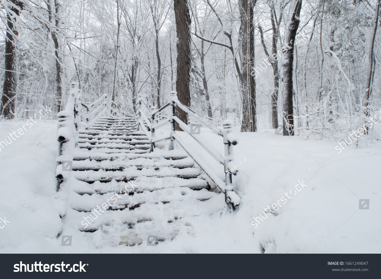 Stairs covered with snow in a peaceful forest