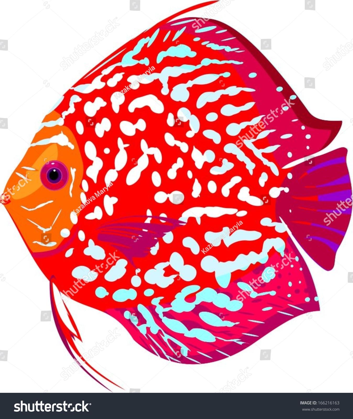Red Leopard Discus Fish Stock Vector 166216163 - Shutterstock