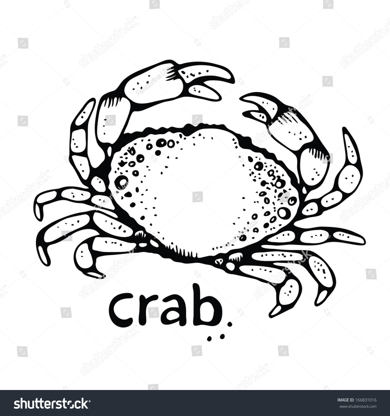 Crab Drawing Stock Vector 166831016