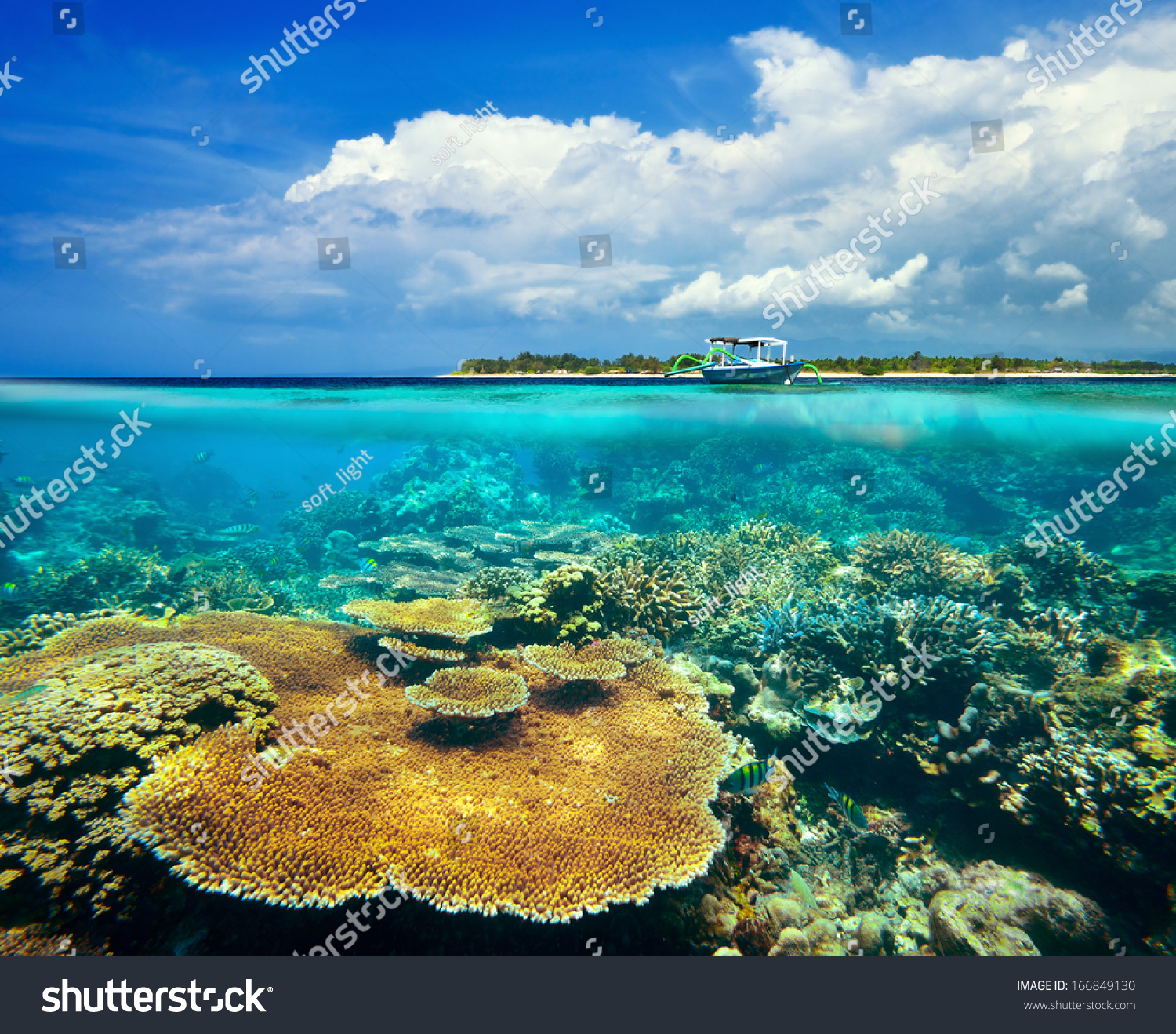 Coral Reef Background: Beautiful Coral Reef On Background Gili Stock Photo