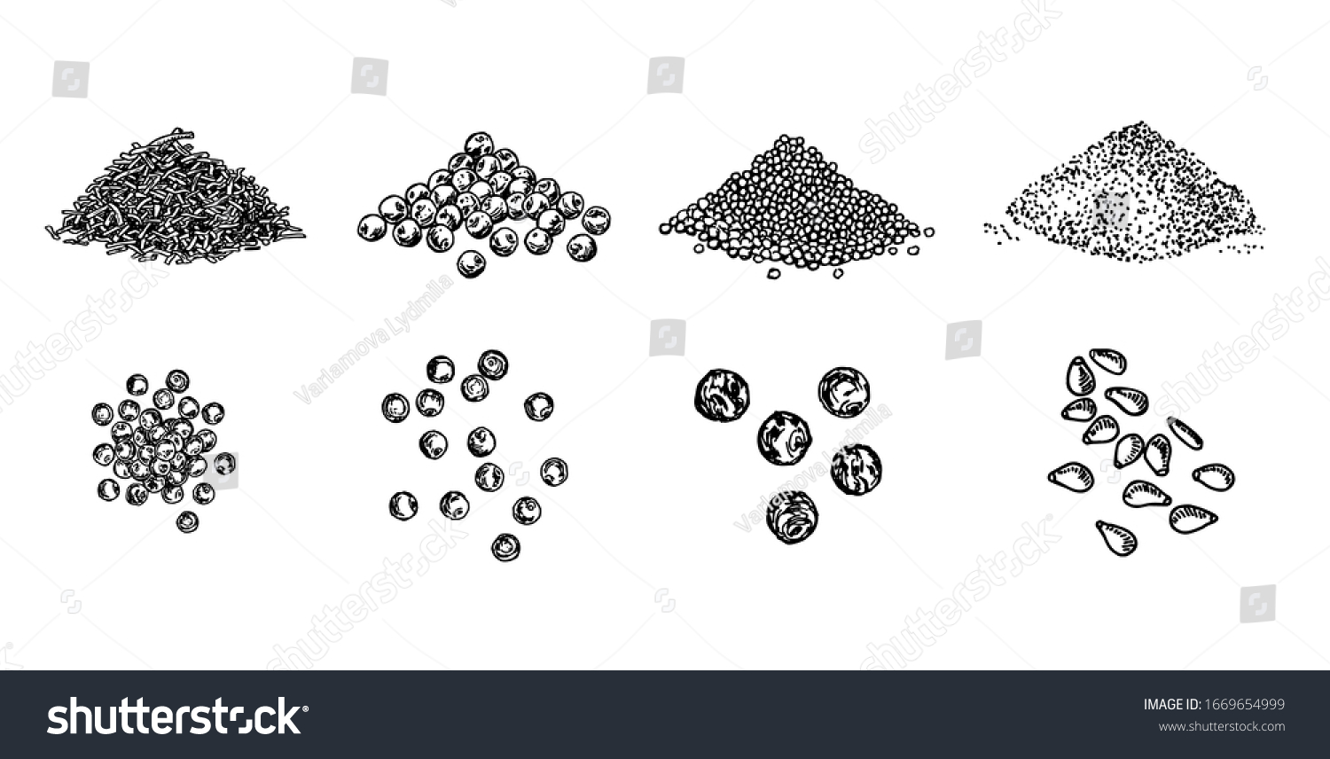 Piles of spices. Black pepper peas, sesame seeds, poppy seeds, caraway seeds. Spices set. Natural seasoning and cooking ingredient. Vector line art illustration on white background #1669654999