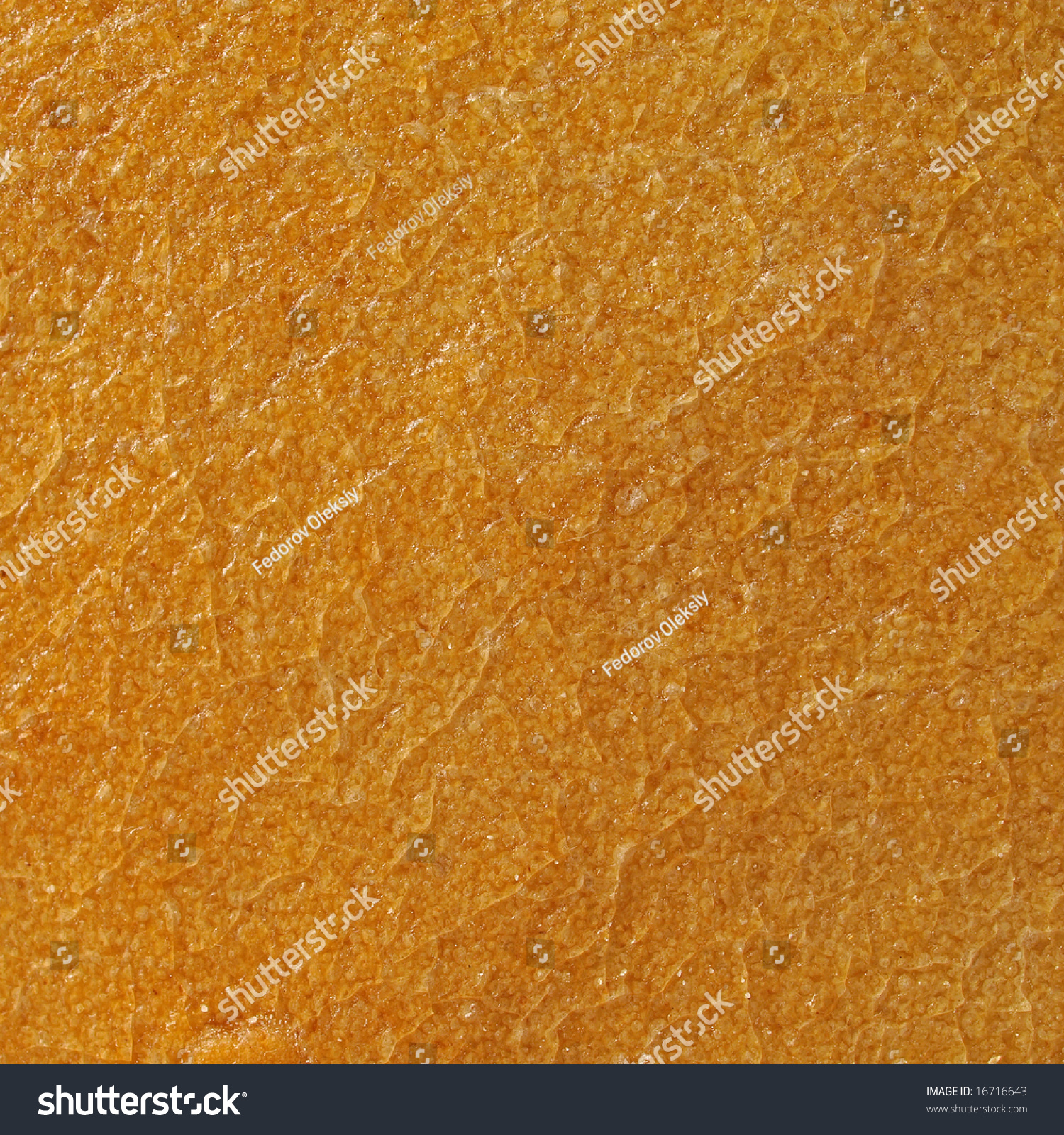 French bread crust texture