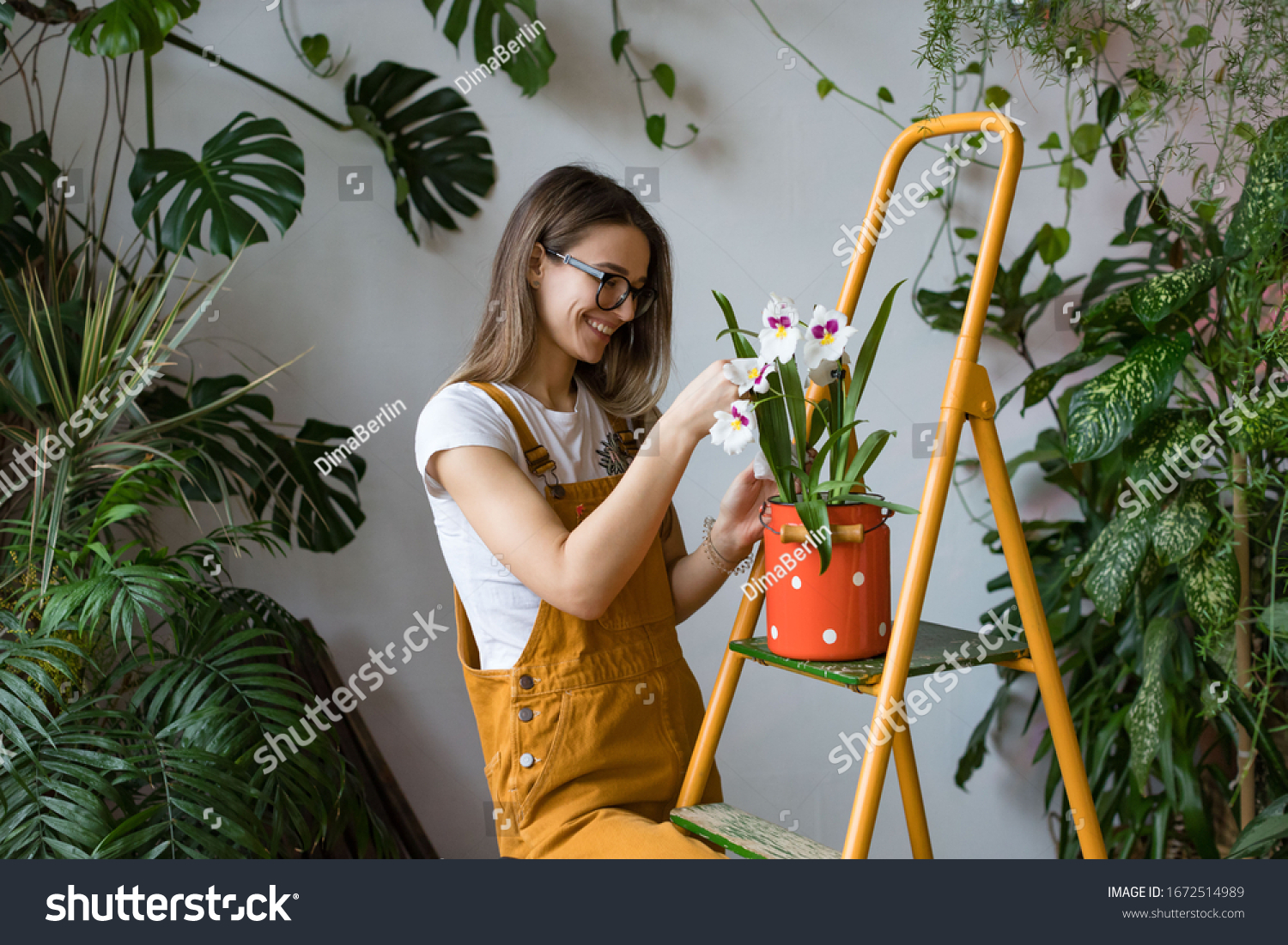 Young smiling woman gardener in glasses wearing overalls, taking care for orchid in old red milk can standing on orange vintage ladder. Home gardening, love of houseplants, freelance.  #1672514989
