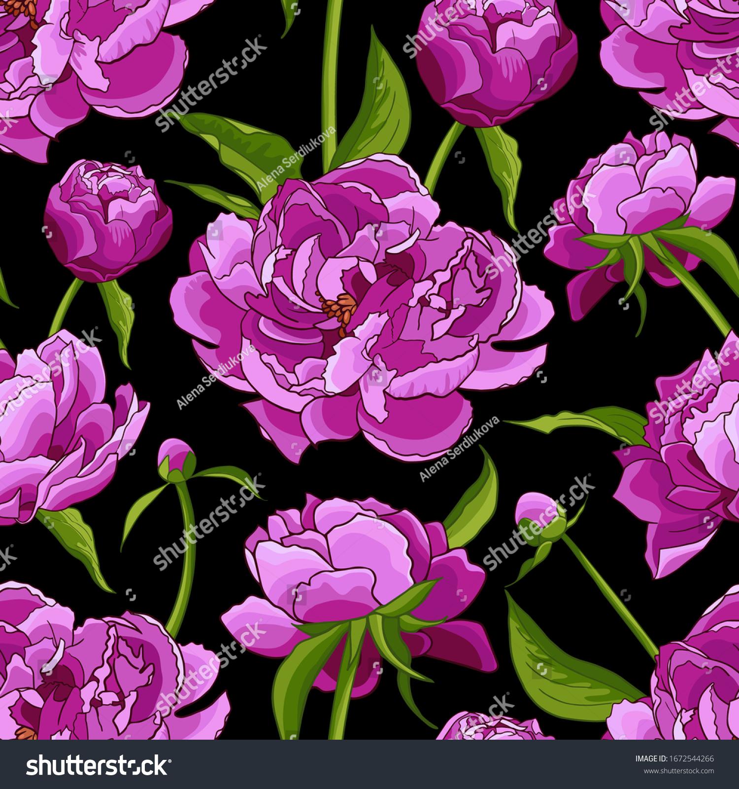 Pink Peonies Green Leaves On Black Stock Vector Royalty Free 1672544266