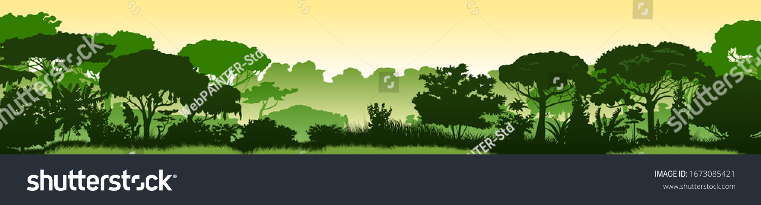 Green landscape of rainforest, jungle thickets. Horizontal background. Scenery silhouette. Dense trees, lush spring, summer grass. Morning or afternoon. Foggy distance. Vector illustration. #1673085421