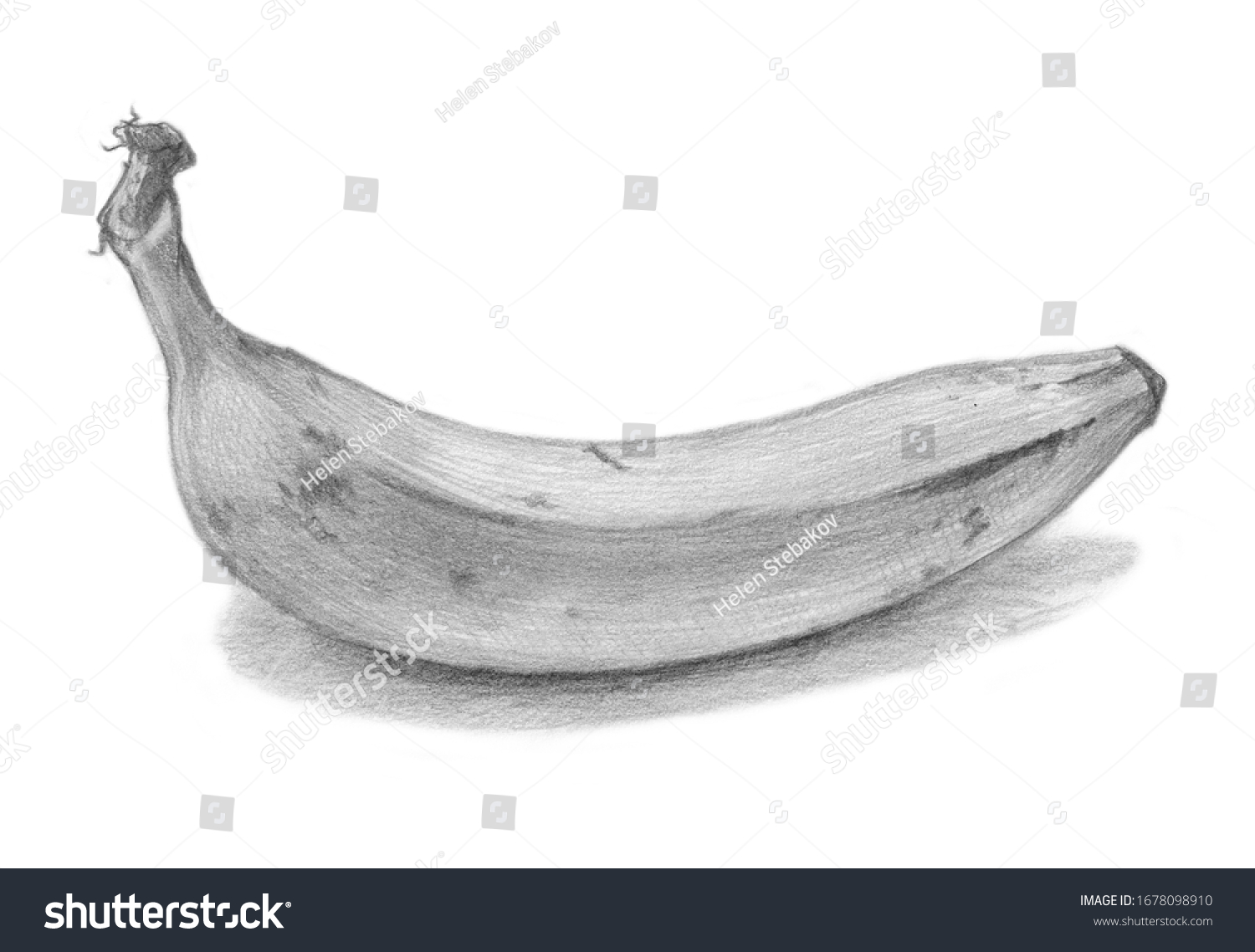Banana Pencil Sketch On White Background Stock Illustration 1678098910