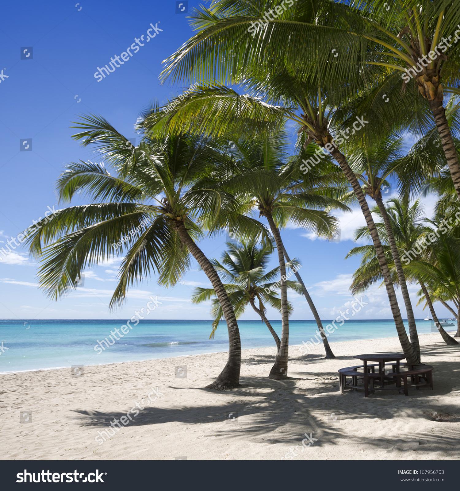 Tropical Island Beaches: Beach On Tropical Island Clear Blue Stock Photo 167956703