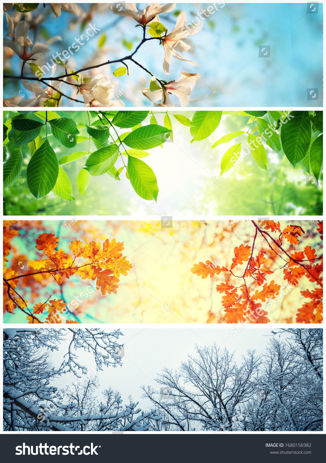 Four seasons. A pictures that shows four different pictures representing the four seasons: winter, spring, summer and autumn.  #1680156982