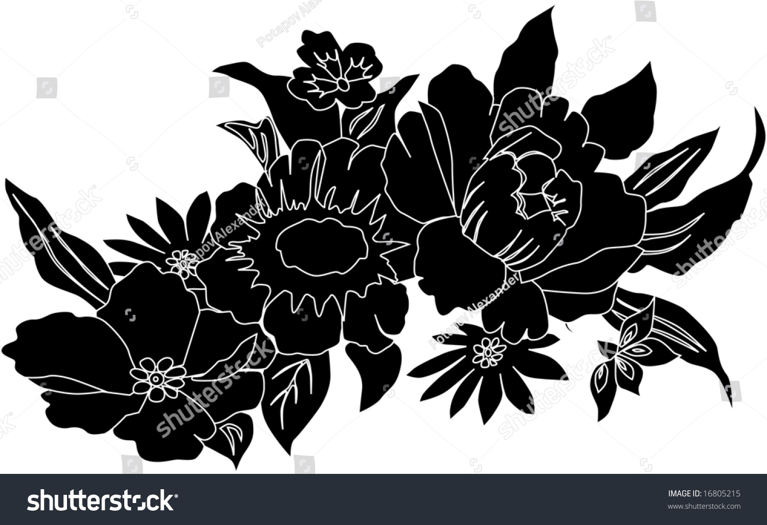 Illustration Black White Flowers Stock Illustration 16805215