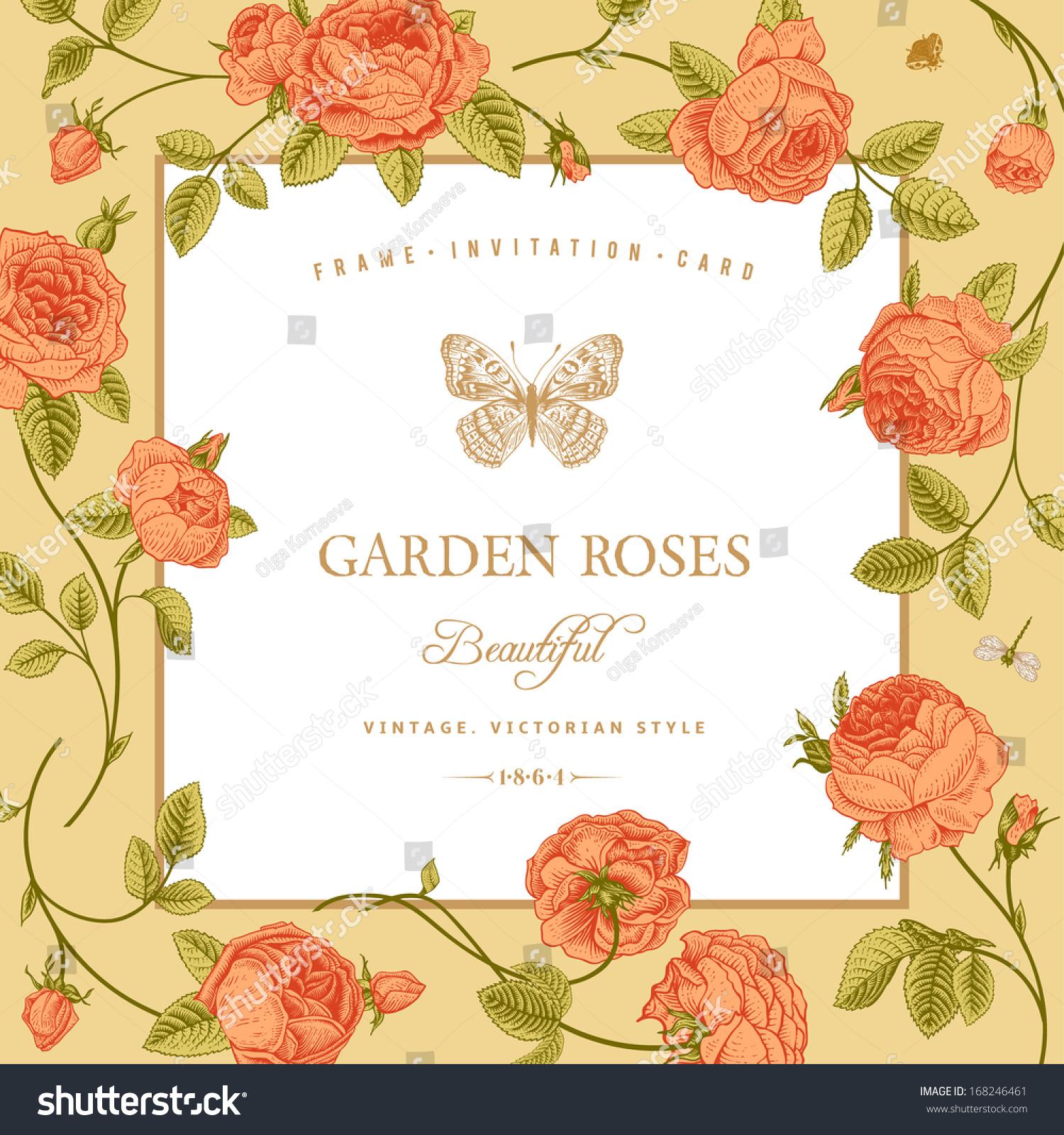 Coral Garden Rose vintage vector card beautiful coral garden stock vector 168246461