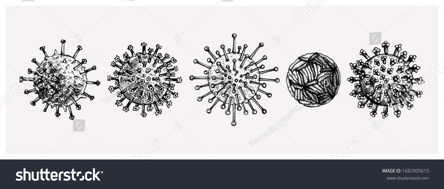 Different kinds of virus - sketches collection. Biology organisms illustration in vintage engraved style. Respiratory virus infection macro drawings. Corona Virus.  Coronavirus 2019-nCoV and other. #1682905615