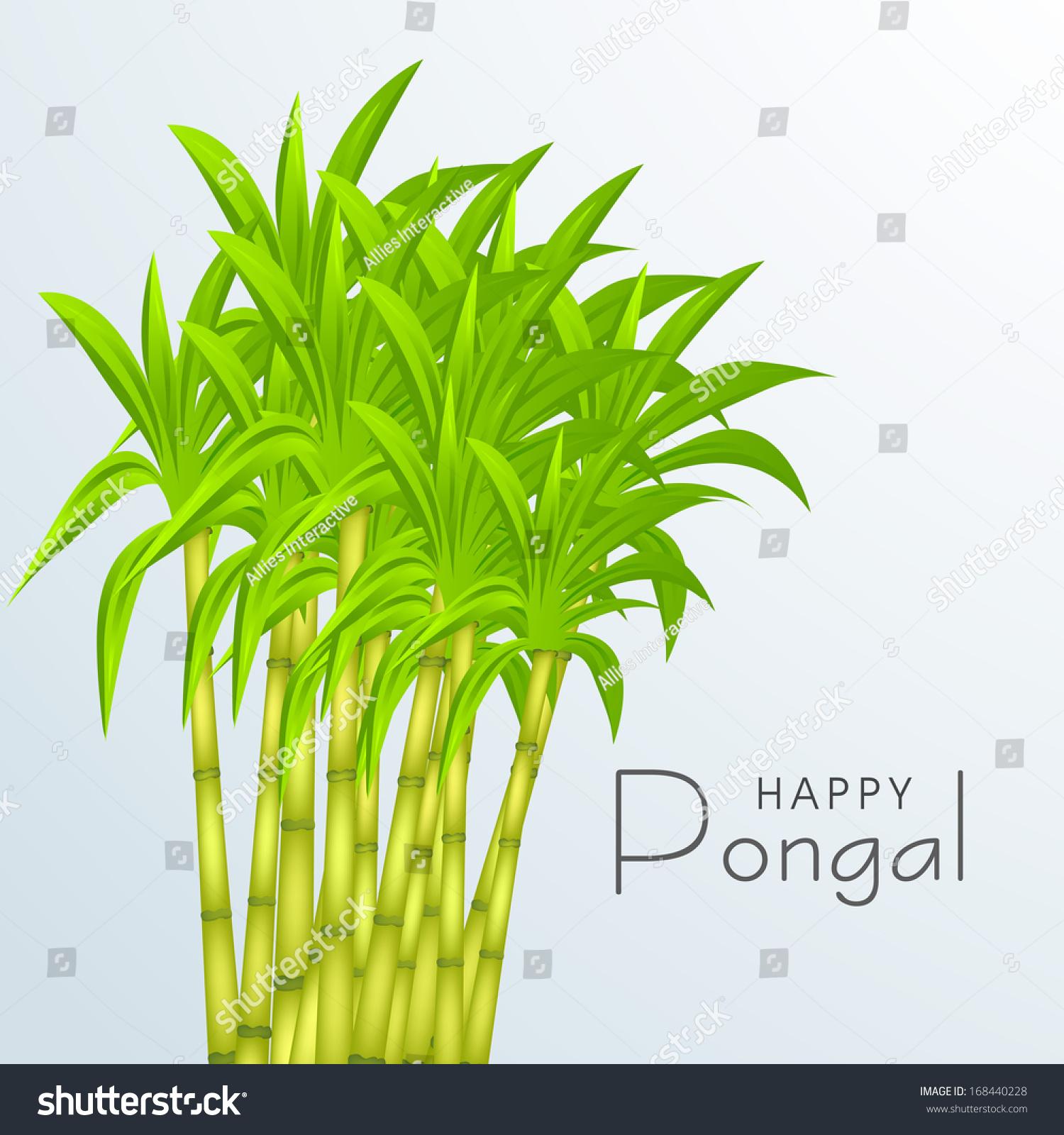 clip art pongal images - photo #12