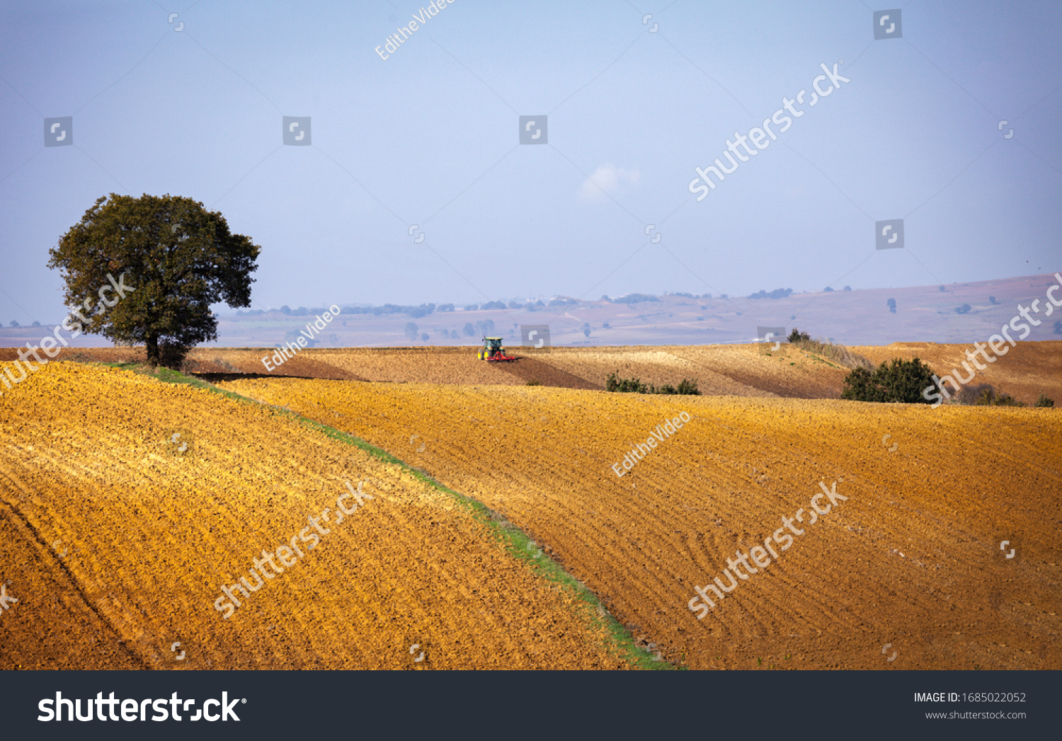 Edirne, Turkey - March 9 2020: Tractor harvesting or cultivating the field which is steep and there is a single tree on the field. Harvesting season in fall near the sunset time.