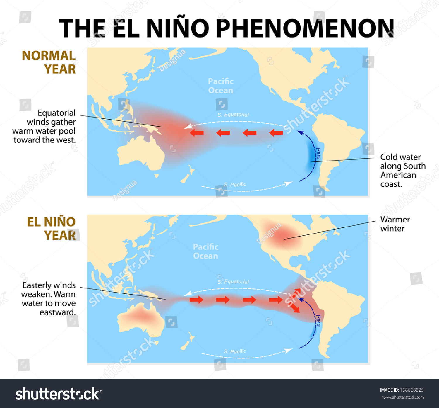 Diagram Shows El Nino Phenomenon El Stock Photo (Photo, Vector ...