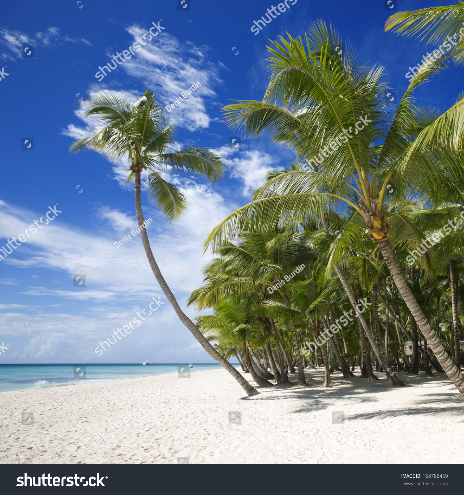 Beach On The Tropical Island. Clear Blue Water, Sand And