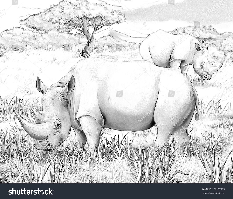 Safari Rhino Coloring Page Illustration Children Stock Illustration ...