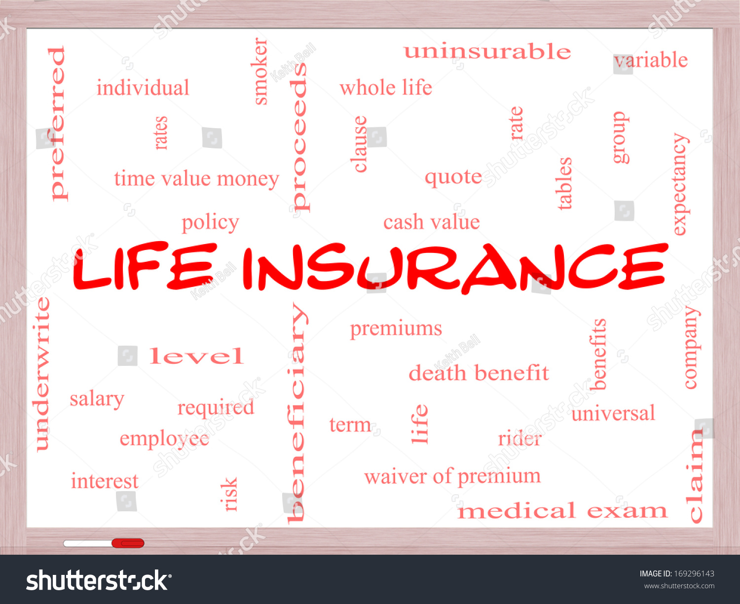 Whole Term Life Insurance Quotes Life Insurance Word Cloud Concept On Stock Illustration 169296143