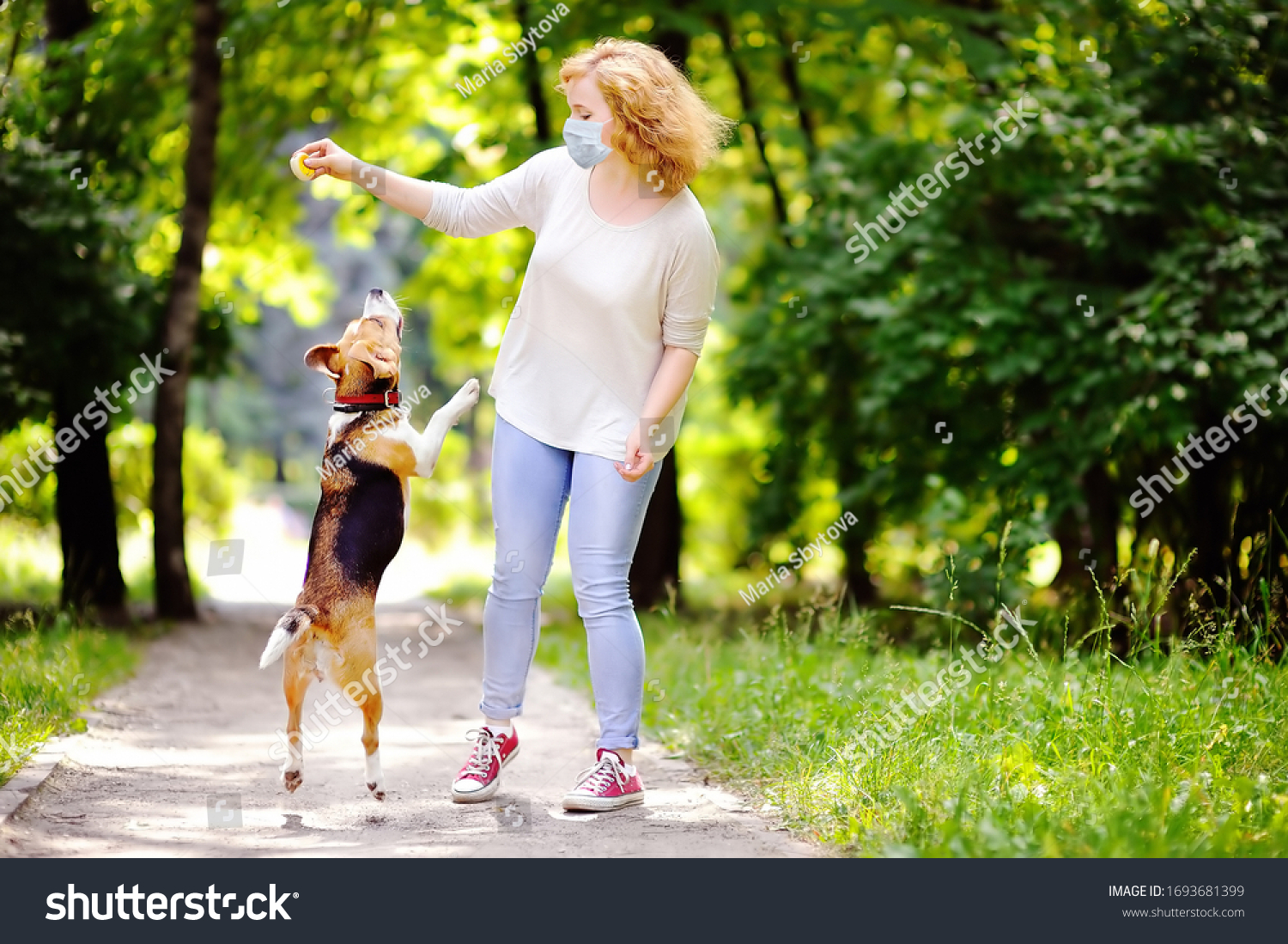 Young beautiful woman wearing disposable medical face mask playing with Beagle dog in the park during coronavirus outbreak. Walking of pets. Safety in a public place while epidemic of covid-19.