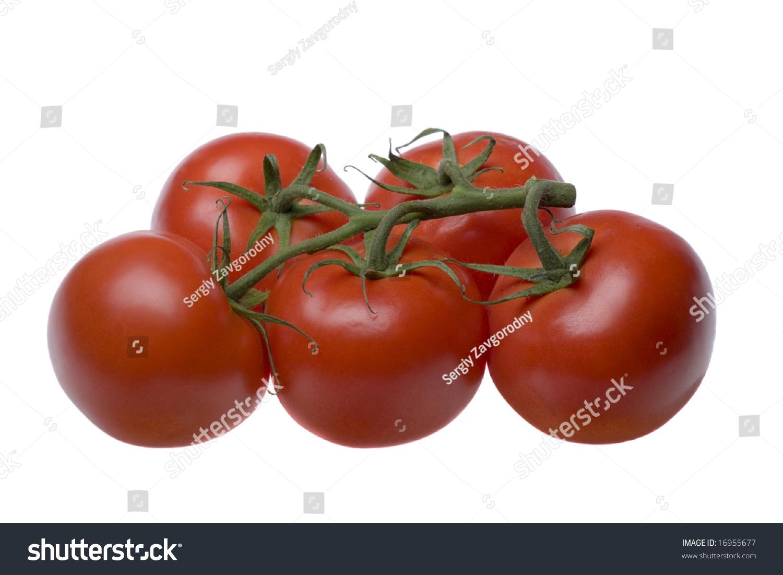 Create an animated Tomato  fodeycom