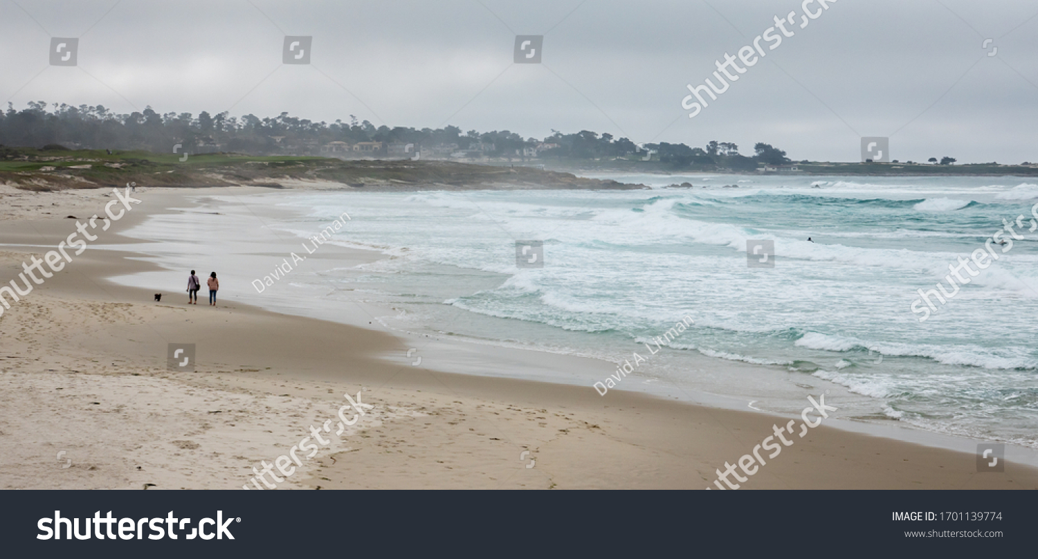 A quiet day at Asilomar Beach, in Pacific Grove, California, with the golf course at Spanish Bay in the background, as a couple of people walk their dog and surfers in the water.
