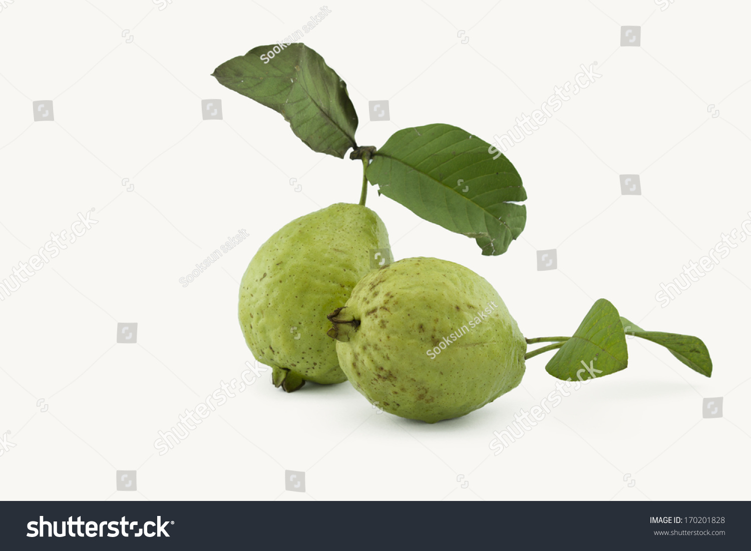 Guava Ripe Fruit Yellow Sweet With Small Hard Seeds Inside Eat A Banana