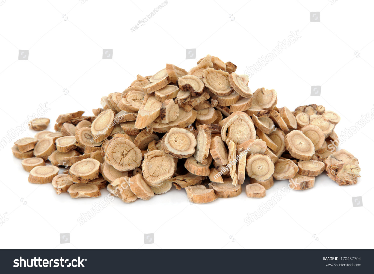 Astragalus root in chinese