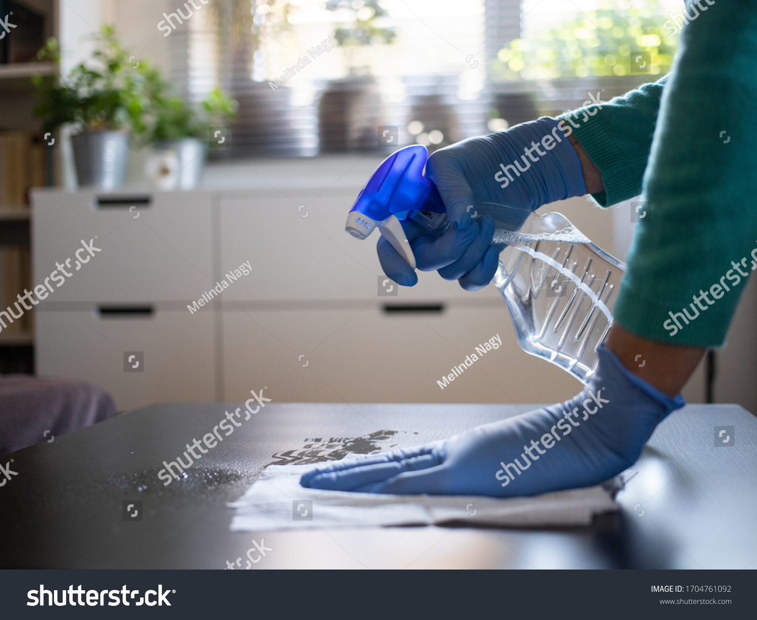 surface home cleaning spraying antibacterial sanitizing spray bottle disinfecting against COVID-19 spreading wearing medical blue gloves. Sanitize surfaces prevention in hospitals and public spaces. #1704761092