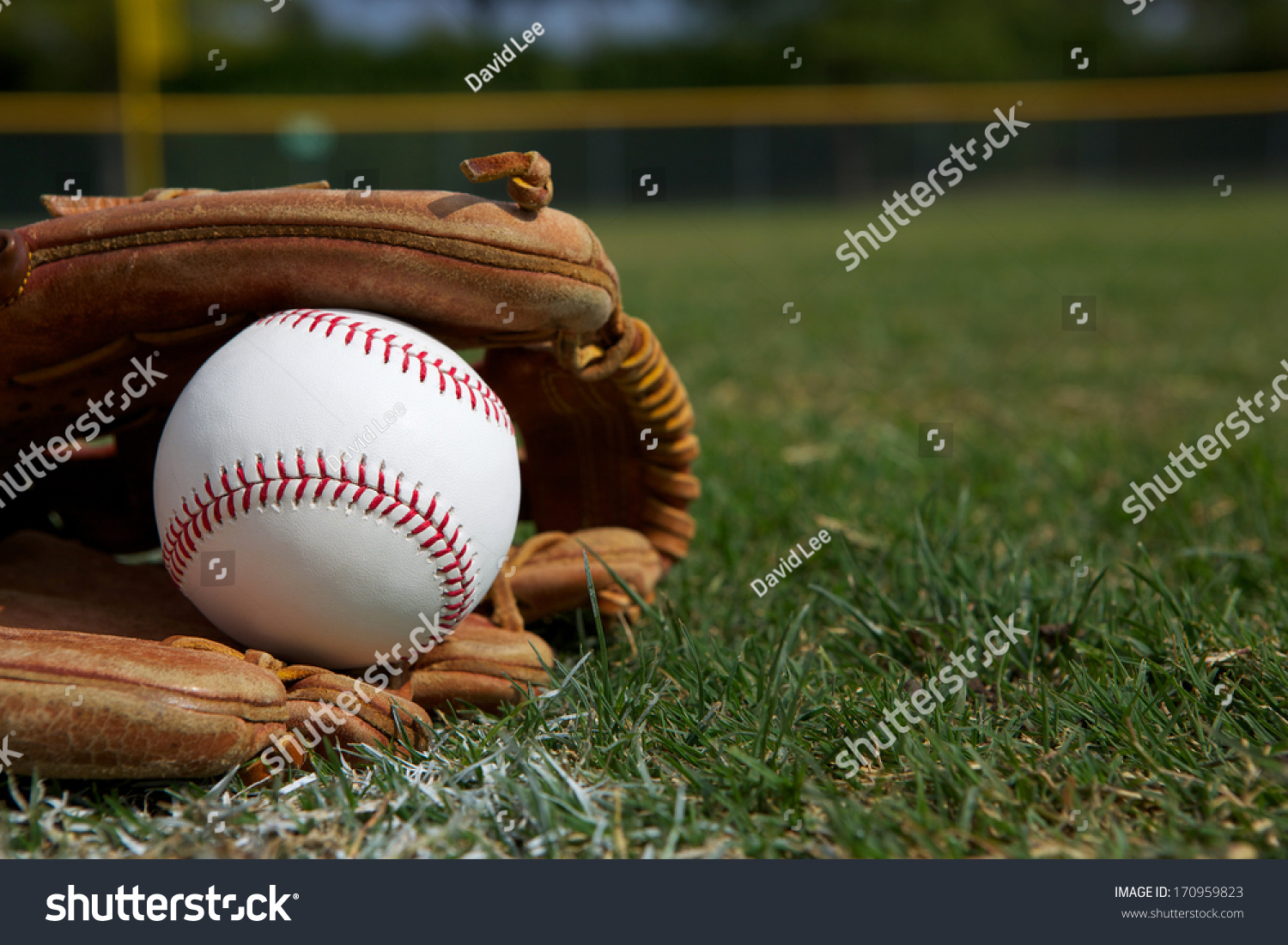 New Baseball in a Glove in the Outfield #170959823