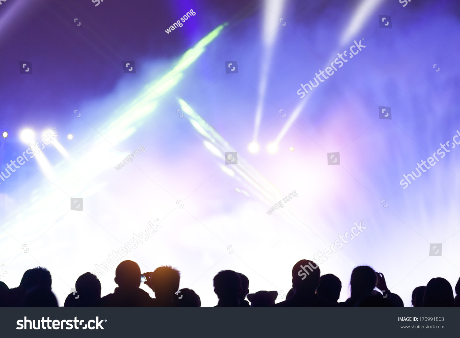 Festivals outdoor stage lighting people stock photo 170991863 festivals outdoor stage lighting and people aloadofball Images