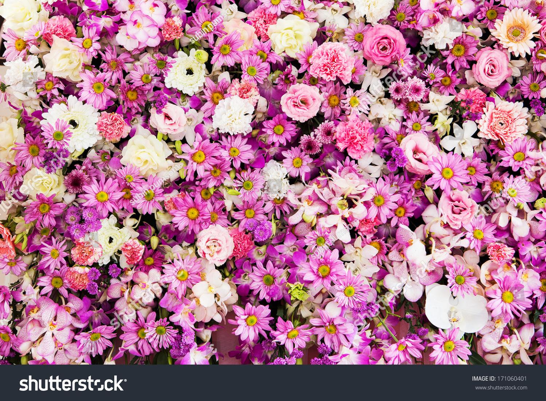 Beautiful Flowers Background Wedding Scene Stock Shutterstock