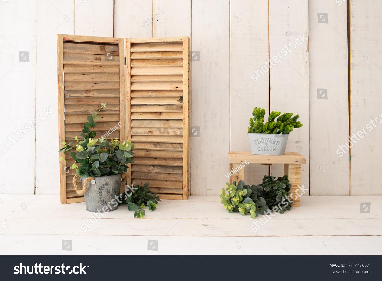 White wood backdrop decoration. Green plants on white wood background. #1711449607
