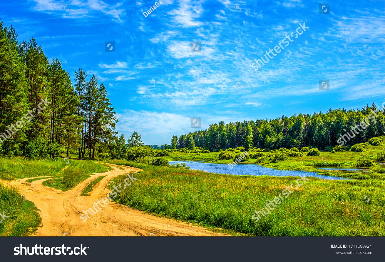 Summer green rural nature landscape. Summer nature view. Summer nature landscape #1711600924