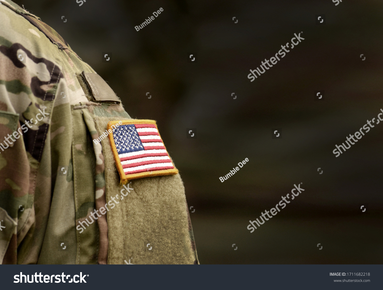 Memorial day. Veterans Day. US soldier. US Army. The United States Armed Forces. Military forces of the United States of America. Empty space for text #1711682218
