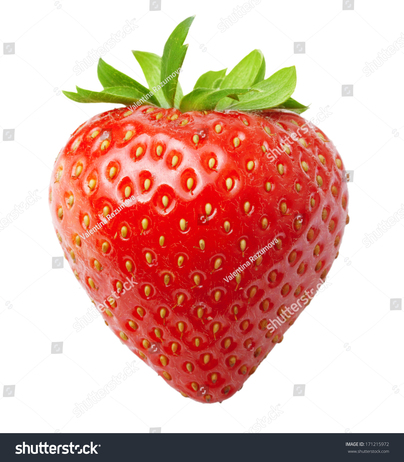 """A super fun experiment we found on KidScienceApp is extracting DNA from strawberries. DNA is the """"blueprint"""" for all organisms. It can be found in the nucleus."""