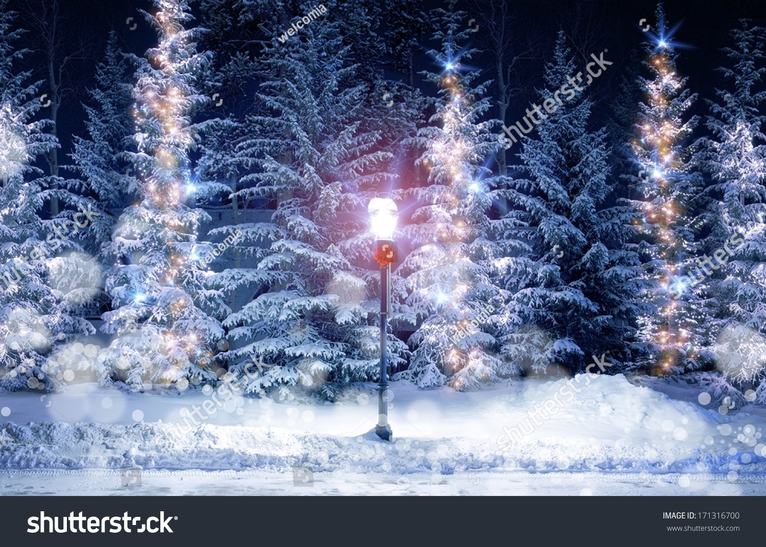 Mysterious Christmas Alley Bright Vintage Style Stock Photo ...
